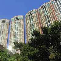 The Leighton Hill 禮頓山